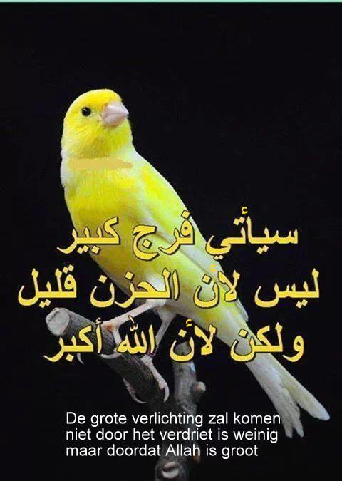 Citaten En Wijsheden Over Tijd : Arabisch nu مـعـهــد الـعـربـيـة الآن wijsheden